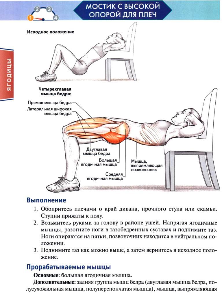 Упражнения для мышц в домашних условиях без гантелей 594
