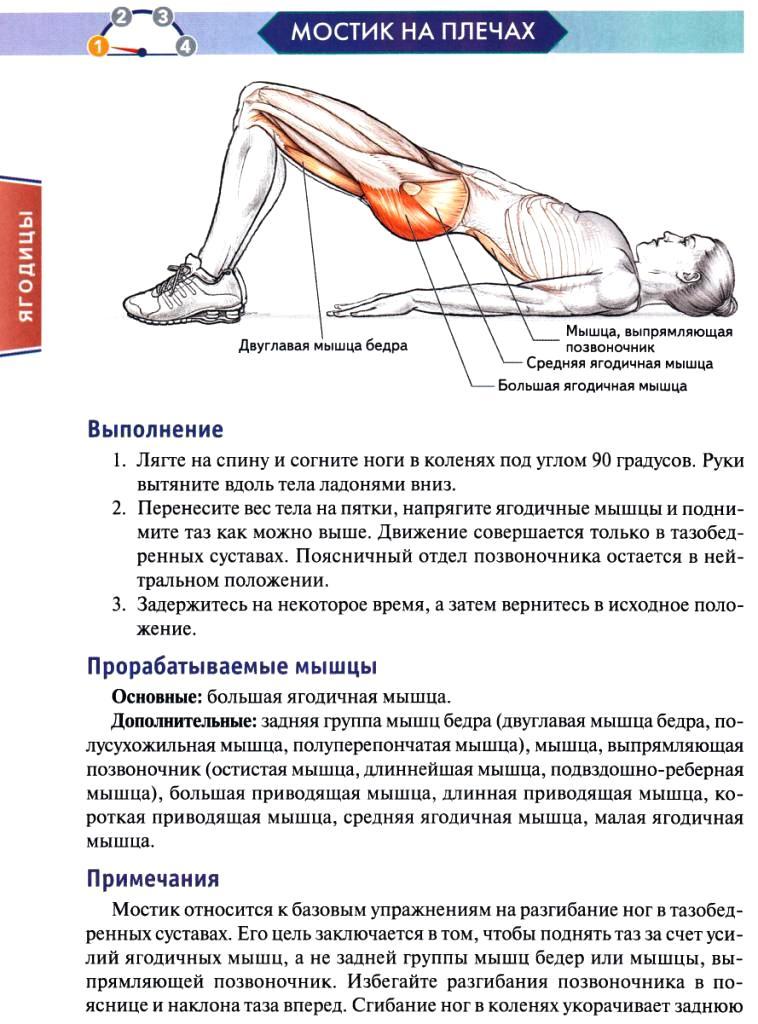 Упражнения для похудения живота и боков: эффективный 26